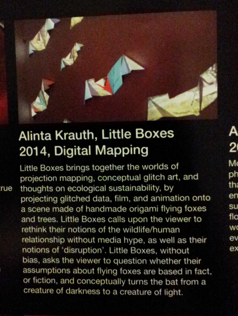 flier - Alinta Krauth - Little Boxes