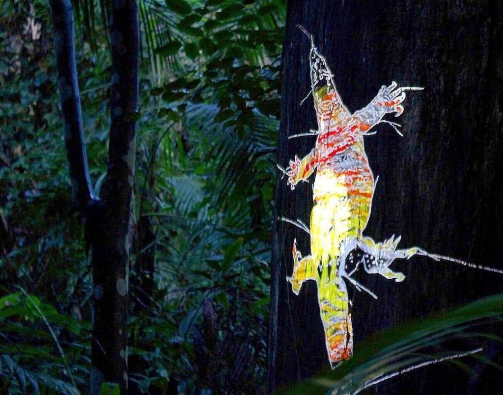 Bioluminous Walking by artist Alinta Krauth